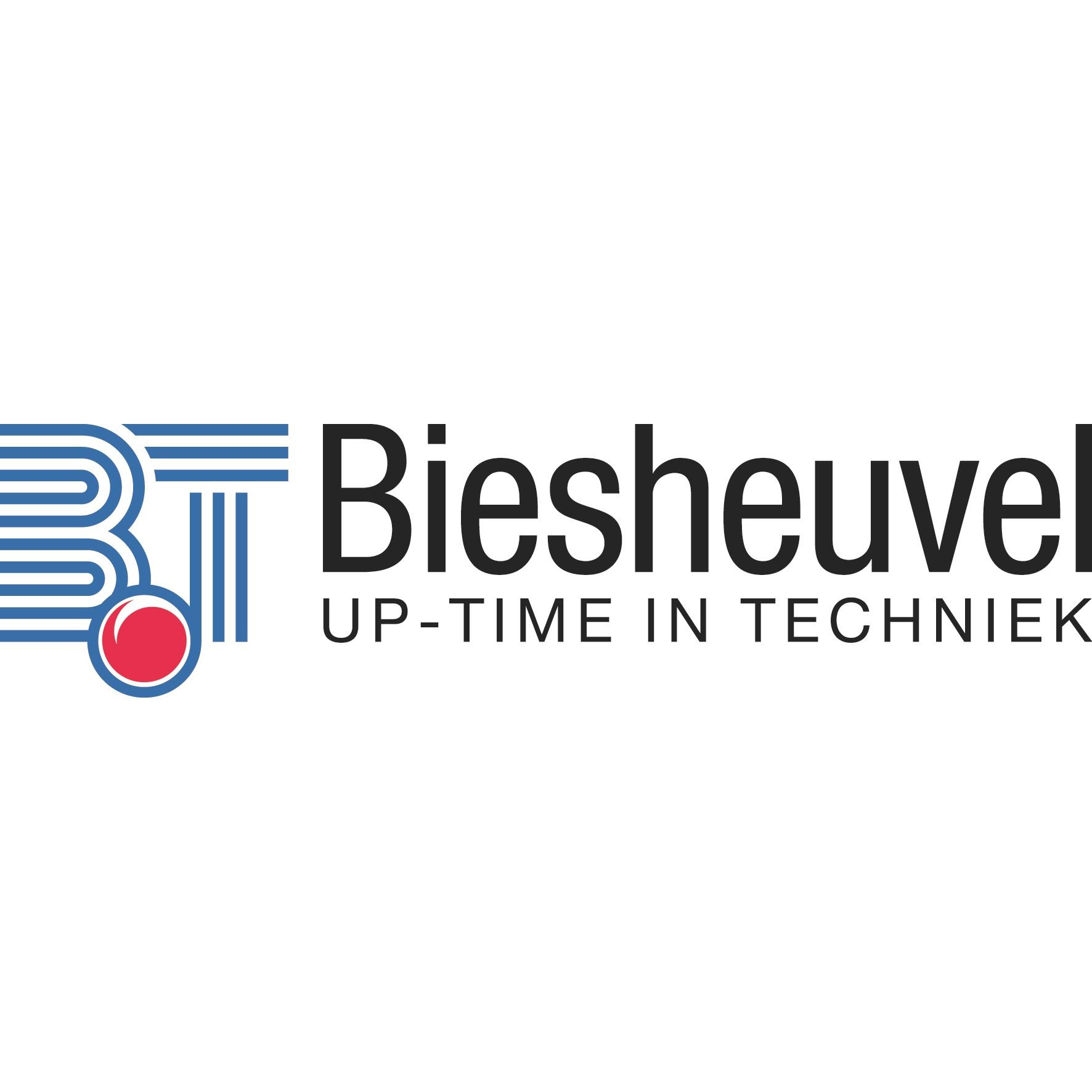 Biesheuvel logo 2012 def