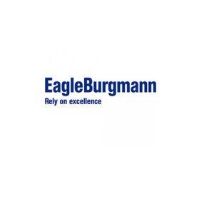 Eagle_burgmann-600x315